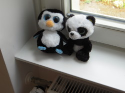 SISTRIX Penguin und Panda (c) smartlemon.de