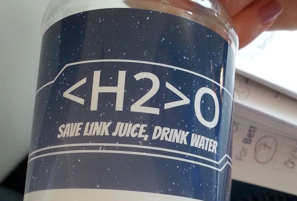 OnPage.org Wasserflasche Link Juice - SMART LEMON