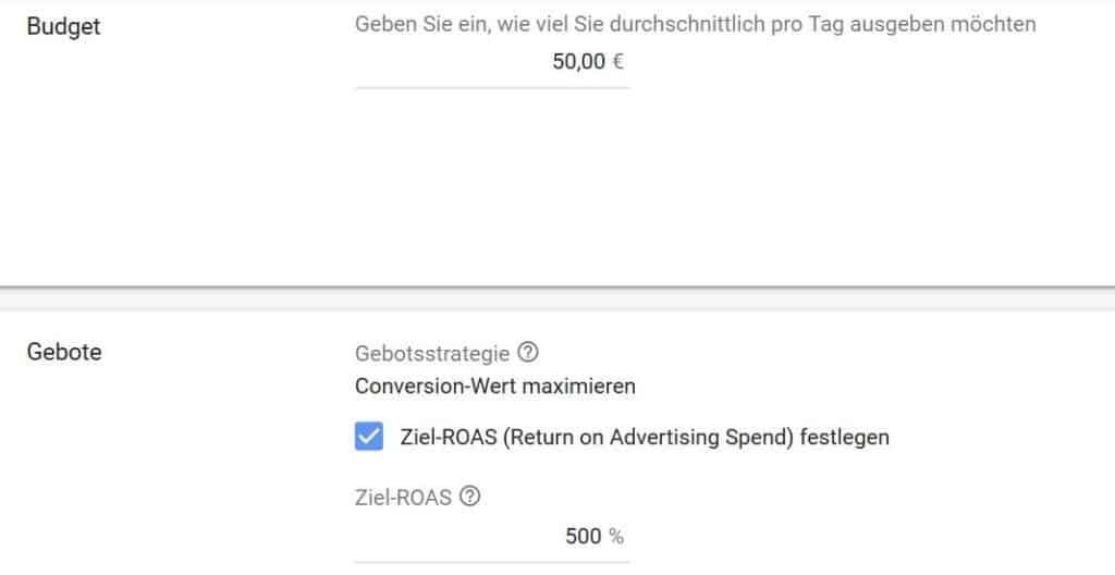 Screenshot Einstellungen Smarte Shopping-Kampagnen - SMART LEMON